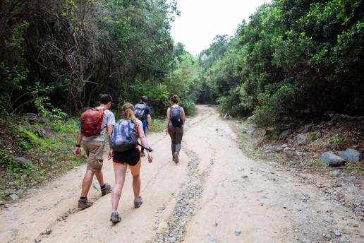 Unsere kleine Wandergruppe unterwegs auf den Gipfel von La Campana